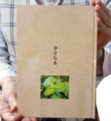 幸せな木表紙